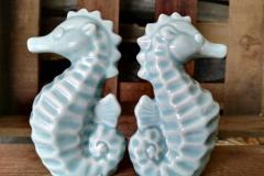 Seepferdchen helles türkis Aqua