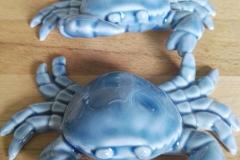 Blau Krebse