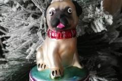 Mops Pug